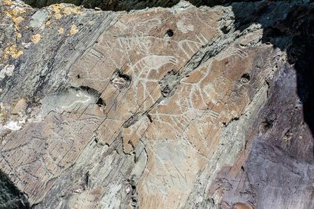 Alte Höhlenzeichnungen und Schnitzereien, Petroglyphen an der Wand. Westsibirien, Russland