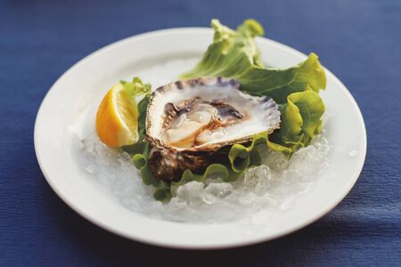 Single oyster in shell on plate served with lemon and green lettuce. Healthy mediterranean food in restaurant Stok Fotoğraf