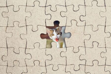 Missing jigsaw puzzle piece and cat inside. Abstract conceptual image Stockfoto - 134134662
