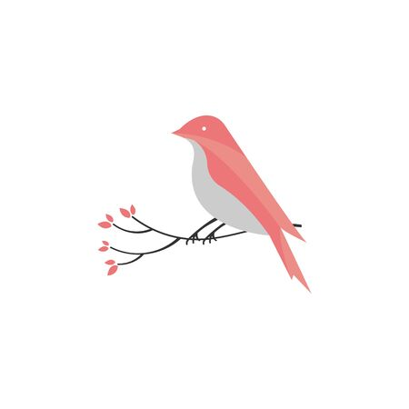 vector Bird isolated on a white background.