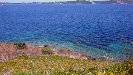 Coastline of Ammouliani island, Athos, Chalkidiki, Central Macedonia, Greece
