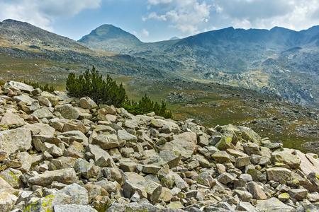 Summer landscape of Spano pole, Pirin National park, Bulgaria