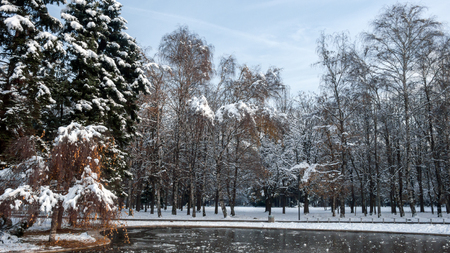 Winter Landscape of South Park with snow covered trees in city of Sofia, Bulgaria