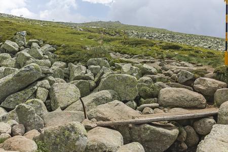 Sommerlandschaft in der Nähe von Cherni Vrah-Gipfel am Vitosha-Berg, Stadtregion Sofia, Bulgarien