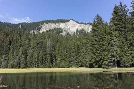 Landscape of The Grassy (Trevistoto) Smolyan lake at Rhodope Mountains, Smolyan Region, Bulgaria