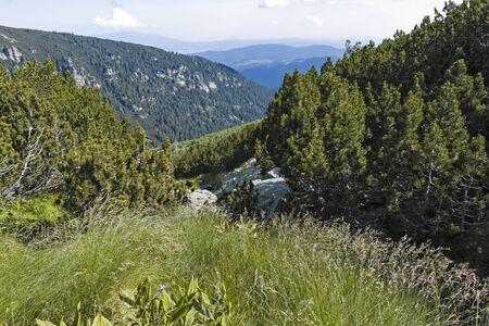 Landscape of Malyoviska river Valley, Rila Mountain, Bulgaria Stok Fotoğraf