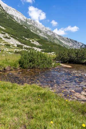Landscape with Banderitsa River, Pirin Mountain, Bulgaria