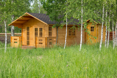 summerhouse: small wooden summerhouse among the young birches