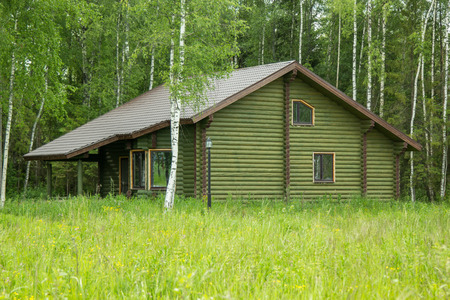 hearthside: log house on the outskirts of the forest