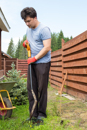 man plants a daylily in a garden Stock Photo