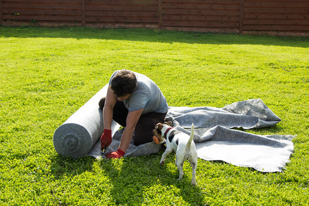 waterproofing material: dog brought ball to man cutting geotextile on the lawn