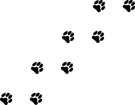 animal tracks: A Dog Paw Trail Illustration Illustration