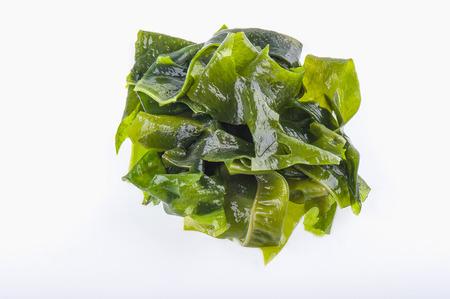 Wet green marine algae pile close up macro isolated on white background 写真素材