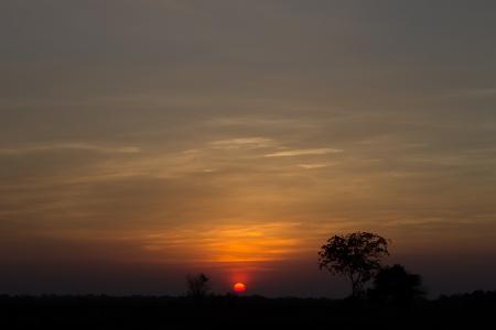 Sunset   Twilight photo
