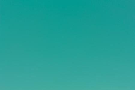 groen behang: Foto van groen behang achtergrond.