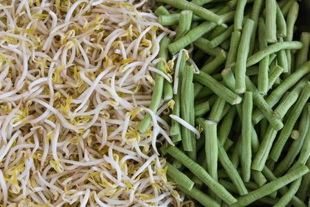 long bean: Yard Long bean and Bean sprout.
