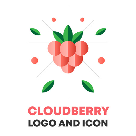 Cloudberry icon, berry vector illustration.