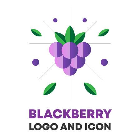Blackberry, berry vector.