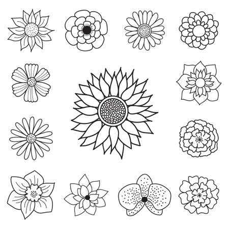 Hand Drawn Sun Flower Orchid Rose Floral Doodle Icon Set