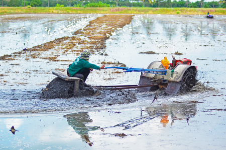 farmer driving original tractor on water before rice filed