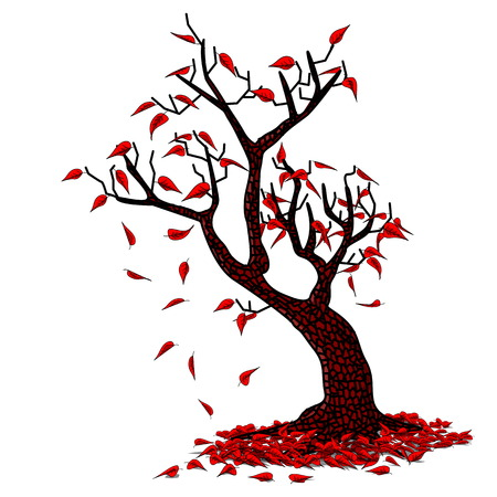 simple background: Simple Fall Drawing on white Background