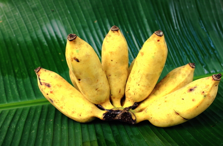 banana: Banana on banana leaf