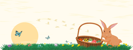 to collect: Rabbit collect the eggs in the grass field