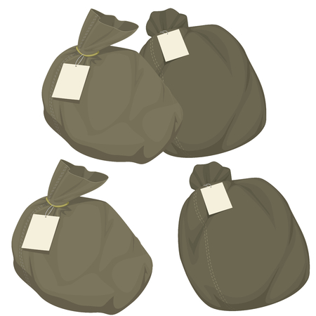 Isolated bag with tag on transparent background