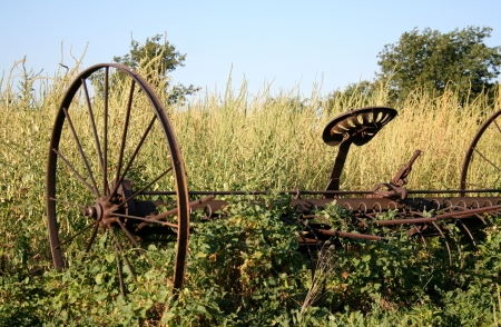 forgotten: forgotten farm equipment