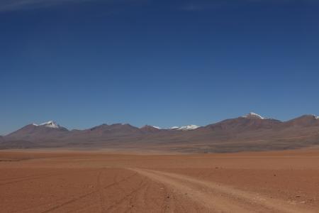 altiplano: Altiplano Bolivia