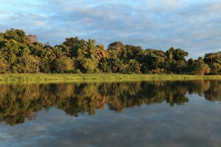 rio amazonas: Las Amazonas