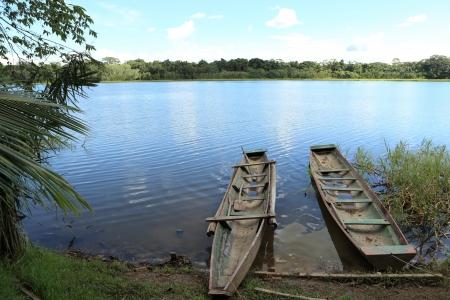 In the Amazonas