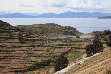 Terrace Farming Lake Titicaca photo
