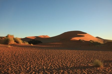 namib: The Desert Namib