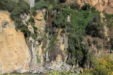 Landscape in the Colca Canyon in Peru photo