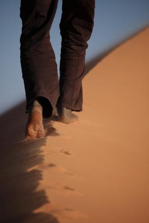 Sanddunes in the Sahara of Algeria photo