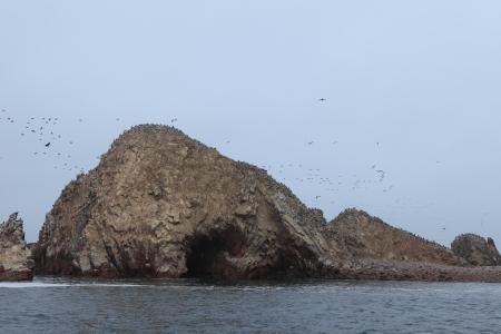 islas: Islas Ballestas Peru Stock Photo