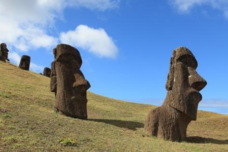 rano raraku: Easter Island Moai Statue