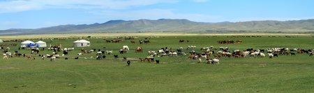 Yurt Village Mongolia photo