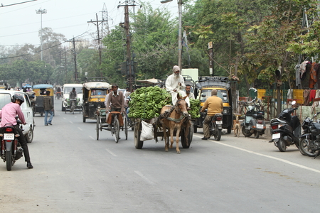 chaos: The normal chaos traffic of India