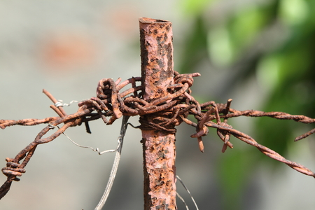 barbed wire fences: Barbed Wire