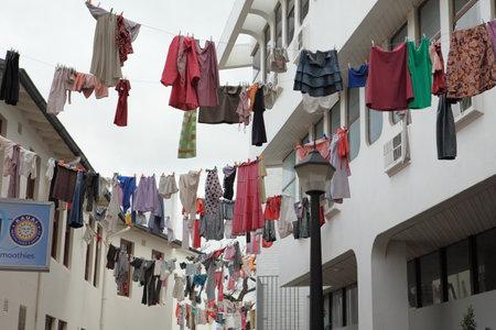 clothesline: Clothesline in Kirstenbosch in South Africa Editorial