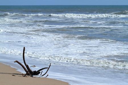 swakopmund: The beach of Swakopmund in Namibia Stock Photo