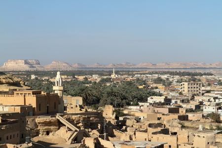 oasis: The Siwa Oasis in the Sahara of Egypt