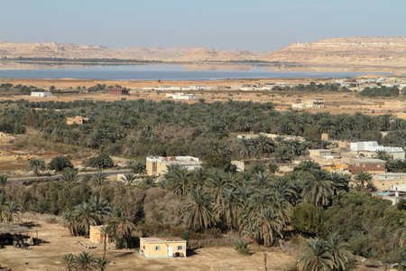 libyan: The Siwa Oasis in the Sahara of Egypt
