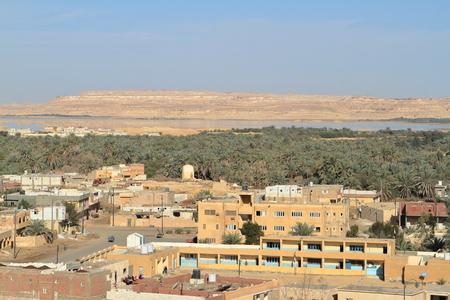 sahara: The Siwa Oasis in the Sahara of Egypt