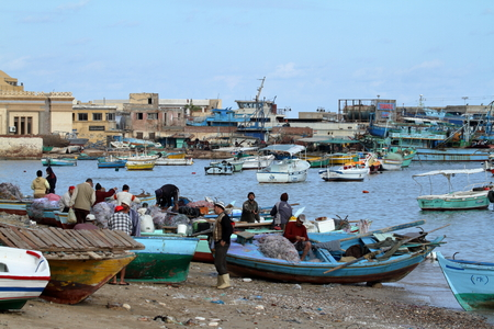 fishing boats: Fishing boats in the harbor of Alexandria