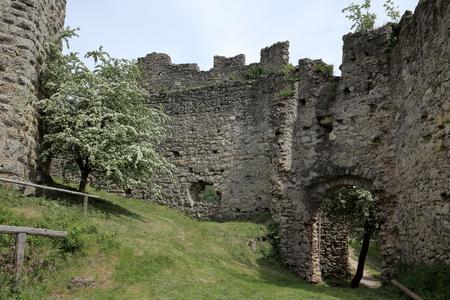 ruin: Castle ruin Brandenburg in Germany