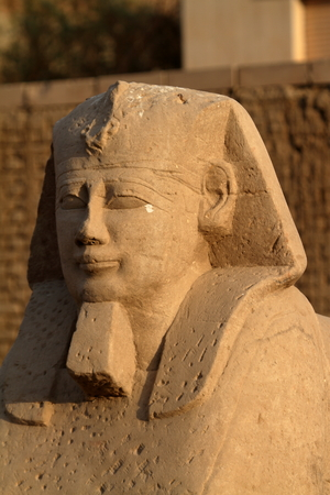 sphinx: The road of the Sphinx from Luxor in Egypt