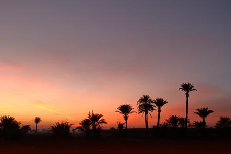 sahara: Sunset in the Sahara of Egypt